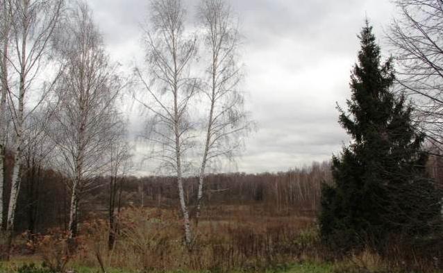 Калужское ш. 12 км. от МКАД, Уникальный Земельный участок 115 сот. ИЖС, 58000000 руб.