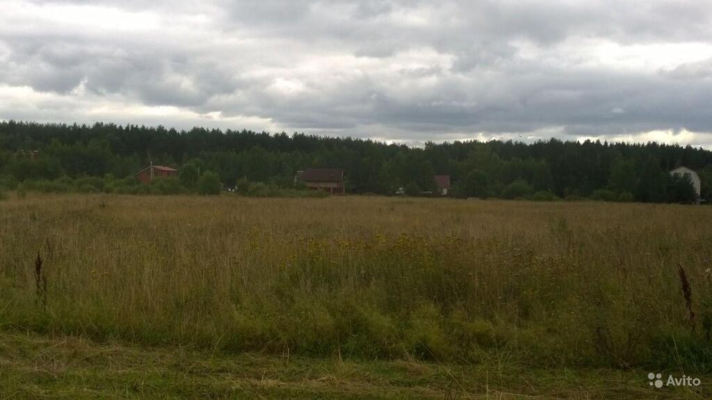 Продается земельный участок 1 Га д. Анкудиново, 18000000 руб.