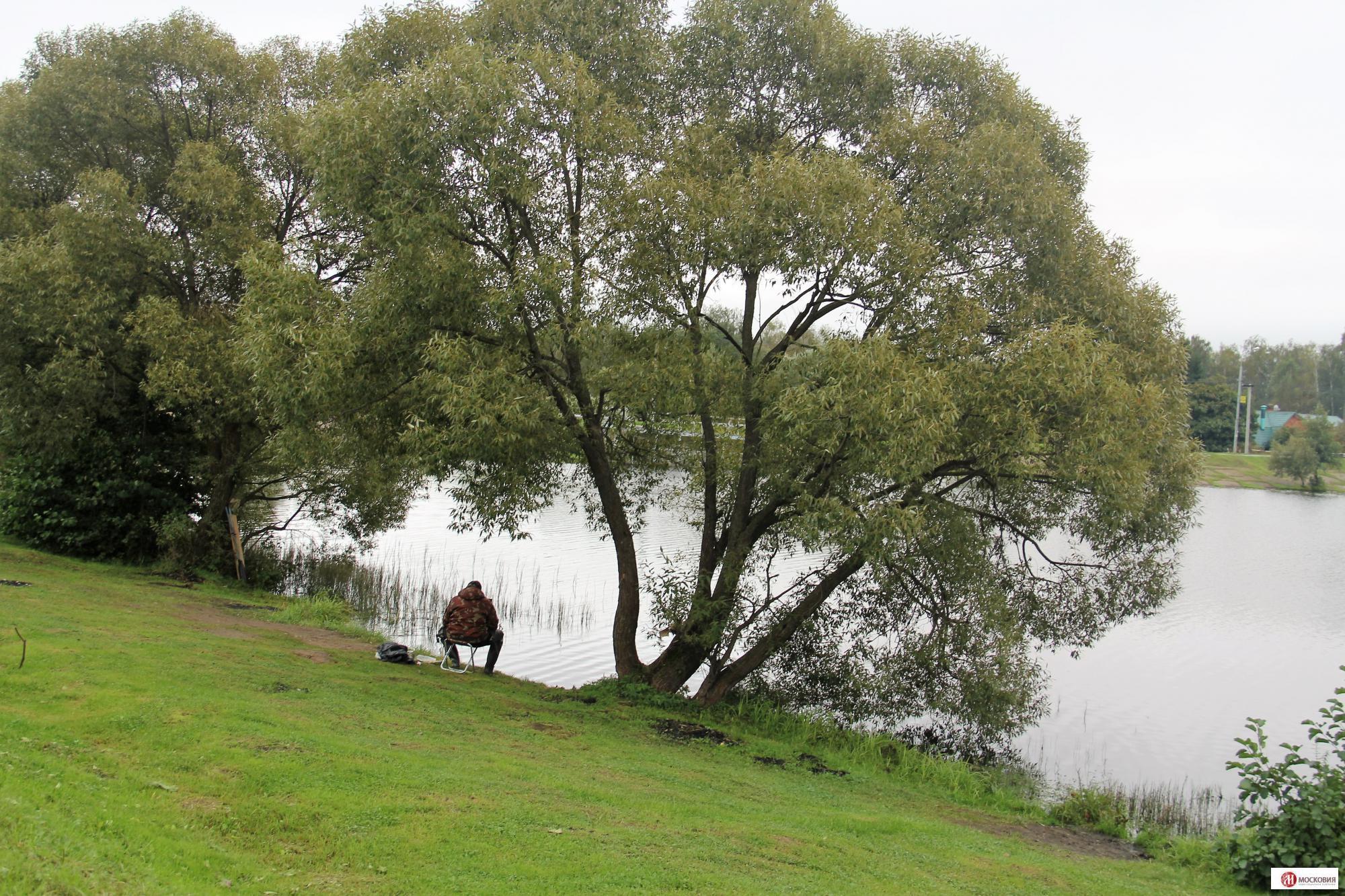 Участок 23 сотки около пруда 30 км от МКАД Варшавское/Калужское шоссе, 12076785 руб.
