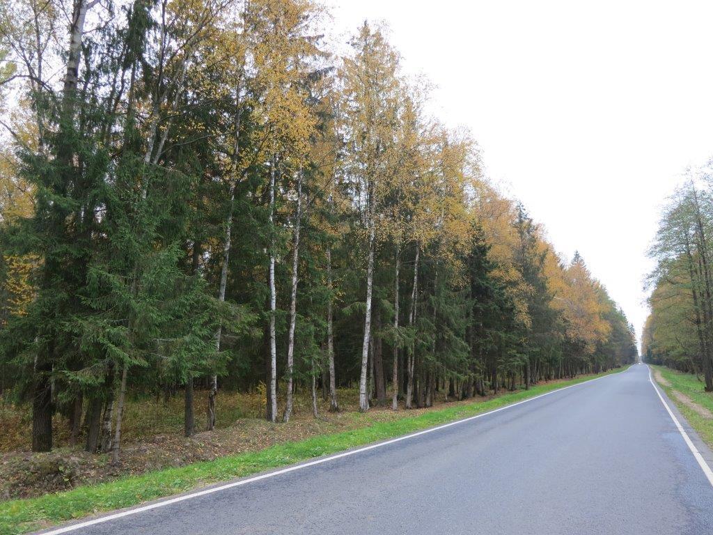 Прилесной участок в жилом поселке, Москва, Киевское шоссе, 3350000 руб.
