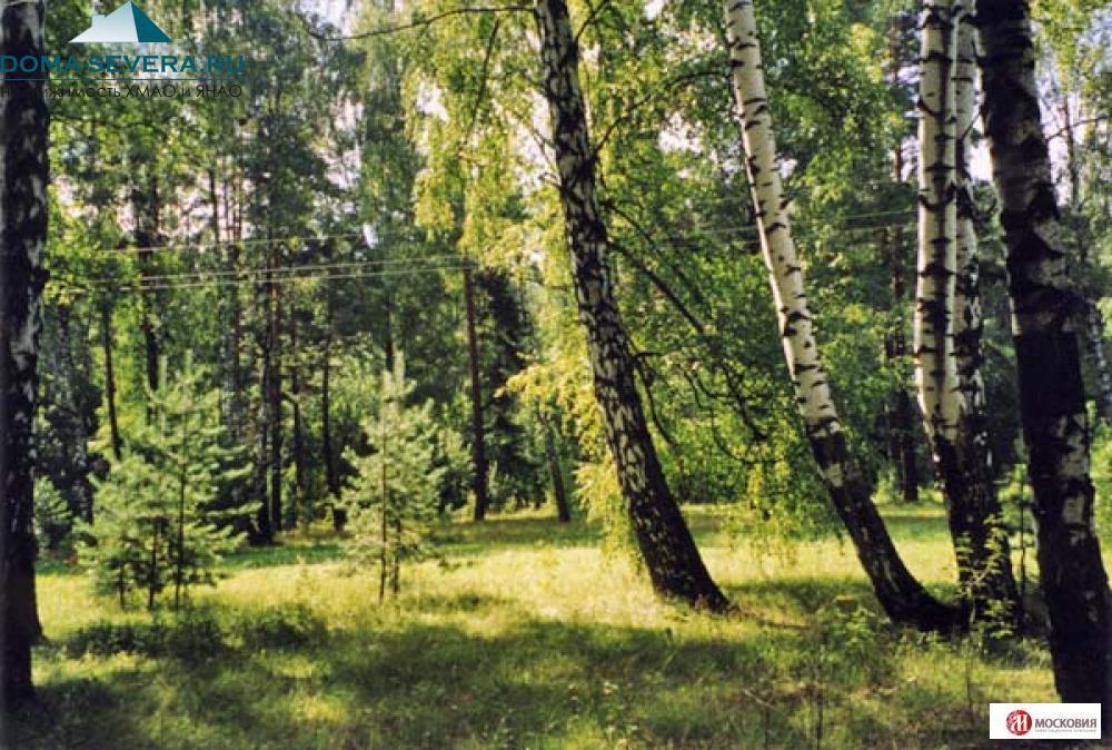 Земельный участок 17.43 сотки, ПМЖ, Новая Моква, 25 км. Калужское ш., 9862374 руб.