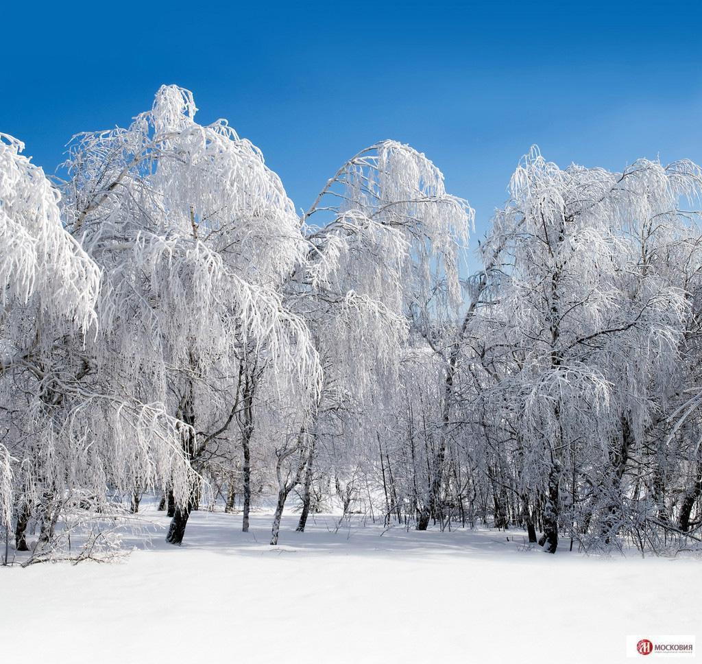 Земельный участок в д. Александрово 24.42 сотки, Симферопольское ш., 7053000 руб.