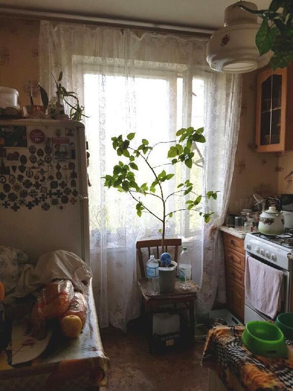 Москва, 3-х комнатная квартира, ул. Зеленодольская д.12, 7200000 руб.