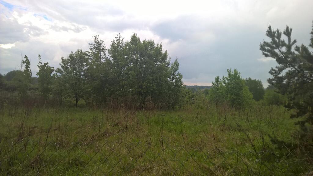 Продается земельный участок 24 сотки, 10000000 руб.