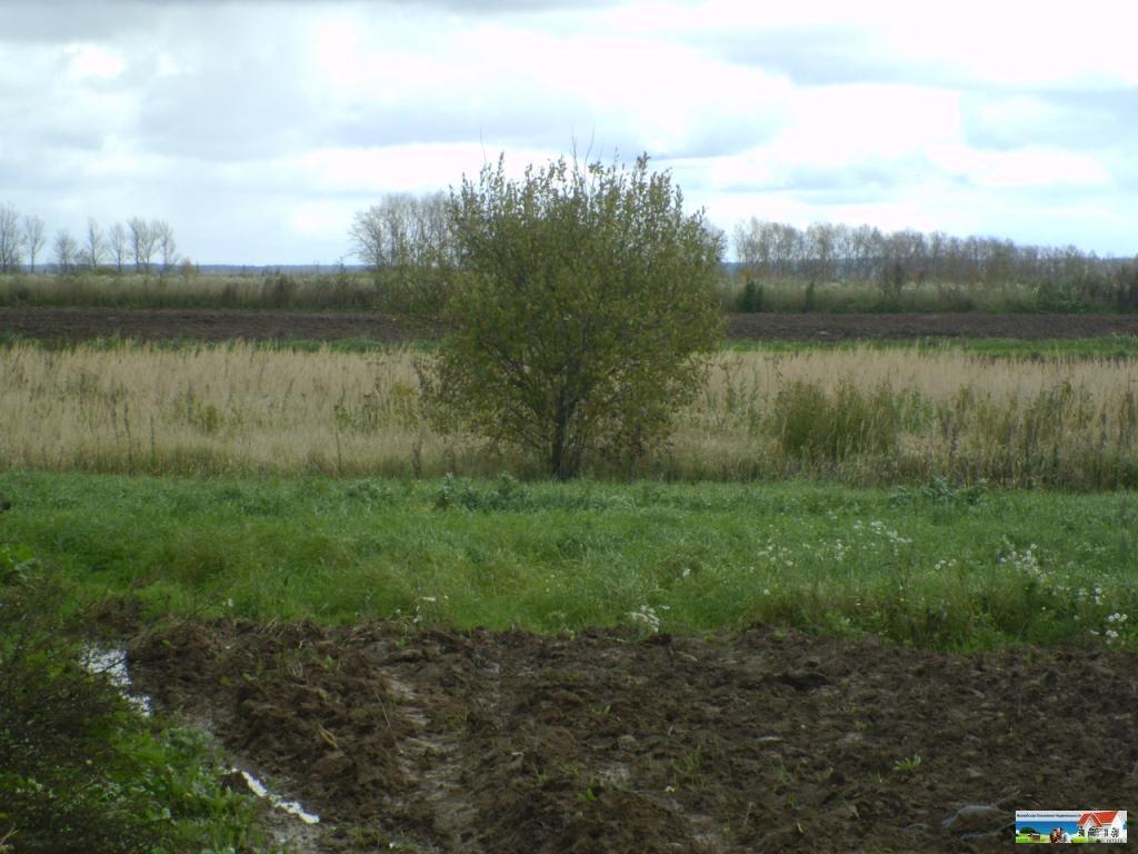 Земельный участок 30 соток в можайском районе, земельные участки шохово, можайский район, id объекта - 200402458