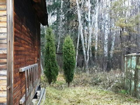 Дача 50 кв.м. деревянная в лесу д.Чернецкое (Москва) 5 соток