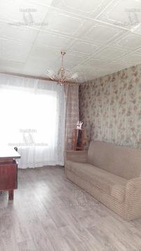 Уютная трехкомнатная квартира в аренду