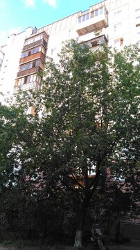 3 кв г. Раменское, ул Приборостроителей д.21