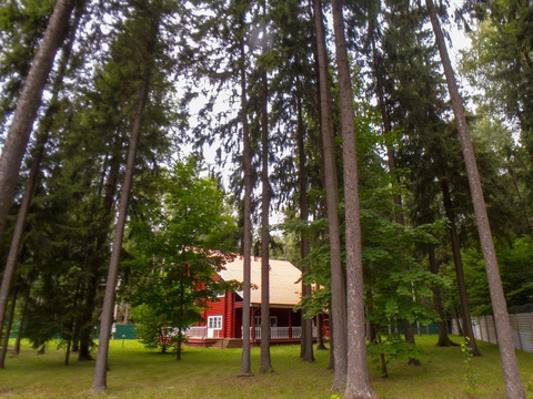 Продаю коттедж 311м2,30сот в лесу, Ярославское ш, в районе д. Ординово