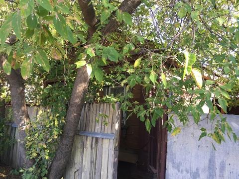 Жилой дом в Ивантеевке, ул.Садовая, д.12
