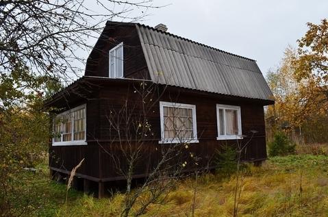 Дача 55 км от Москвы деревня Васютино