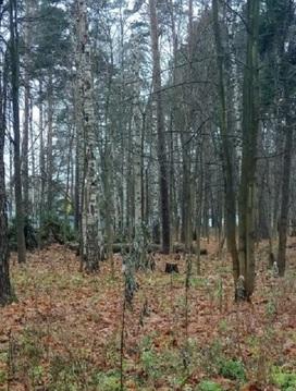 Продается земельный участок в п. Тарасовка Зеленый бор Пушкинский р-н