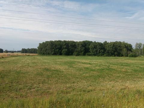 Продается участок сельхозназначения у д. Иванчиково Зарайского р-на МО