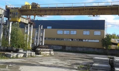 Сдается ! Открытая площадка 8000 кв. м.Твердое покрытие Кран 10т, 800000 руб.