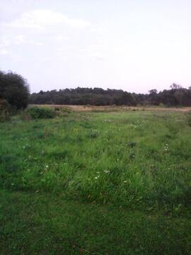 Земельный участок 17 соток в центре деревни Рассудово, 3550000 руб.
