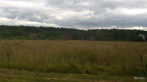 Продается земельный участок 1 Га д. Анкудиново