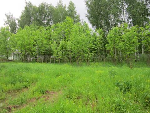 Продается земельный участок в черте г. Пушкино на берегу Учинского вод, 1868400 руб.