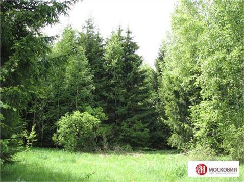 Прилесной участок 15,6 соток, ПМЖ, 38 км по Киевскому ш. Новая Москва