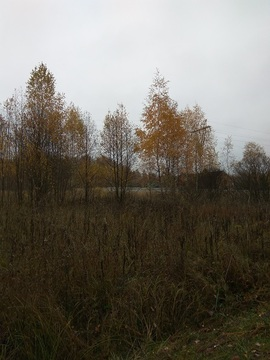 Земельный участок в деревне Васино