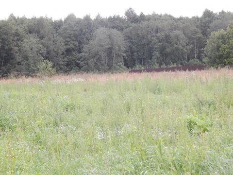Участок 27 соток д. Мытники у леса рядом с Озернинским водохранилищем