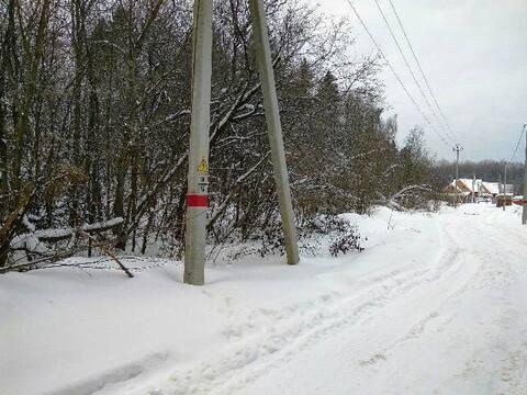 Лесной участок вблизи пос. Снегири