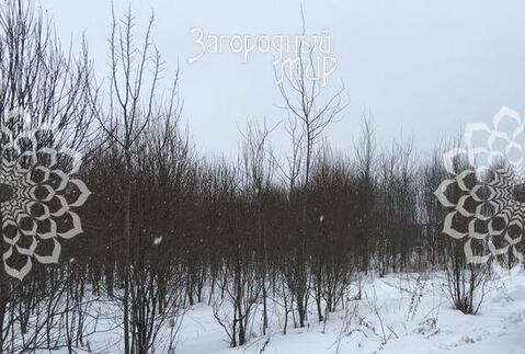 Симферопольское ш, 56 км от МКАД, Васькино