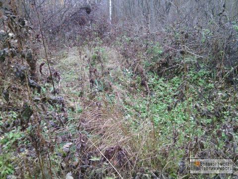 Лесной земельный участок 10 соток в садовом товариществе «Строково»