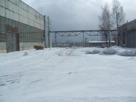 Сдается ! Открытая площадка 5500 кв. м. Бетон, Закрытая территория.