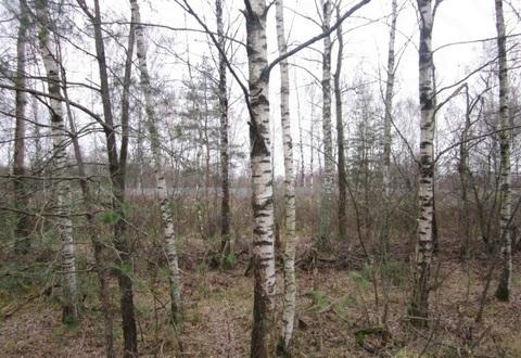 Продается земельный участок у воды в г. Пушкино, Ярославское шоссе