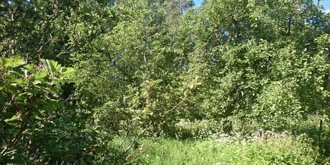 Продается земельный участок в г. Пушкино, м-н Заветы Ильича