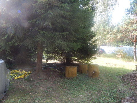 Участок 6 соток рядом с д. Субботино в лесу