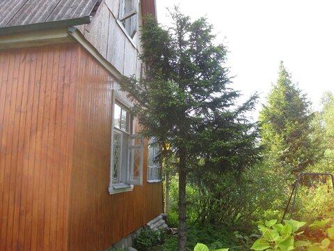Сдам дом в Радищево на летний период