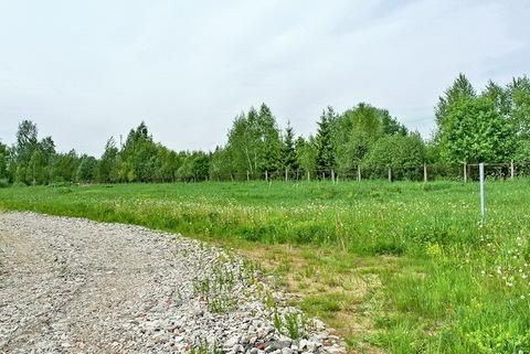 Участок 6,5 соток для ИЖС рядом с Истринским вдхр. 48 км от МКАД