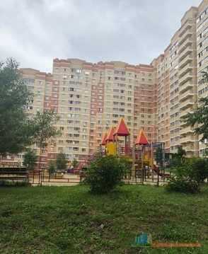 Однокомнатная квартира в Щёлково