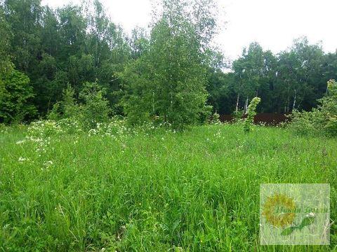 Участок в обжитой деревне Буньково крайний к лесу