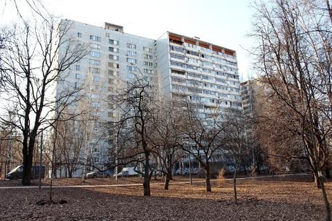 Квартира около парка