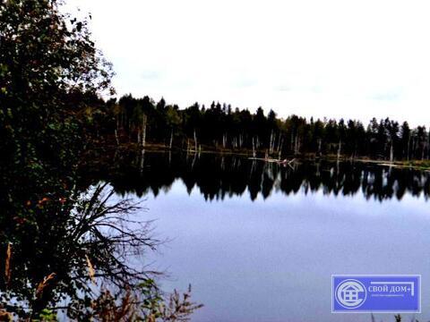 Участок 6 соток на берегу озера в охраняемом СНТ Горняк (около Сычево)