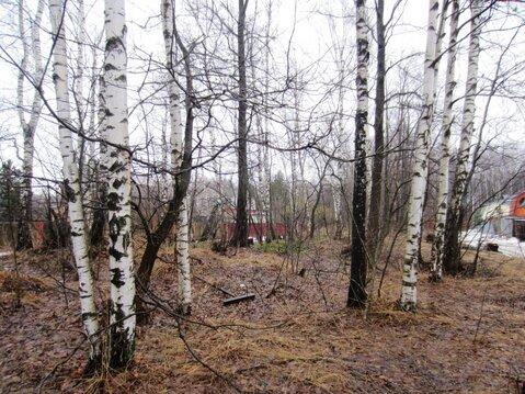 Участок Пушкино д, Горелый лес СНТ