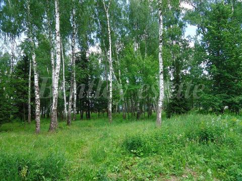 Продажа лесного участка в охраняемом кп на Рублево-Успенском ш.