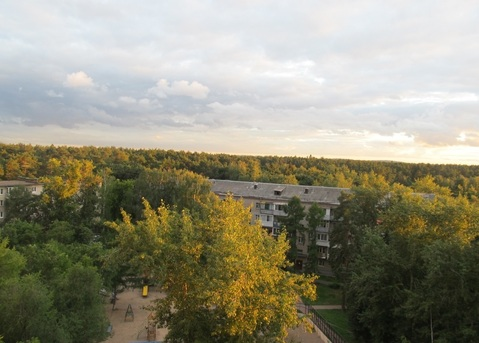 2 комнатная квартира 49 кв.м. по адресу: г.Жуковский, ул.Осипенко д.4а