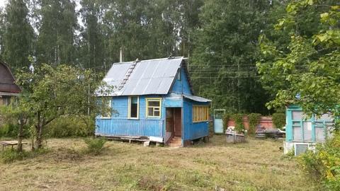 Избушка в сказочном лесу 47 км от Москвы