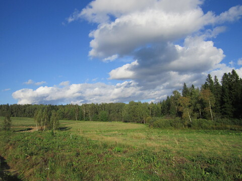 Успейте купить земельный участок в экологически чистом районе Подмоско