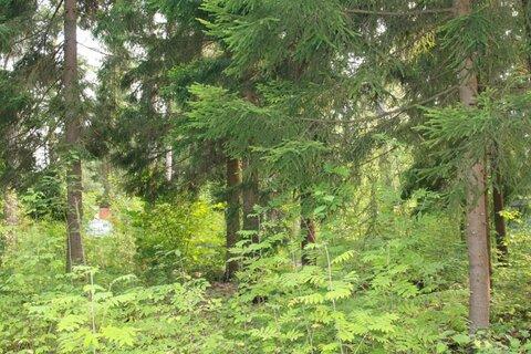 Продается земельный участок, Домодедово, 20 сот
