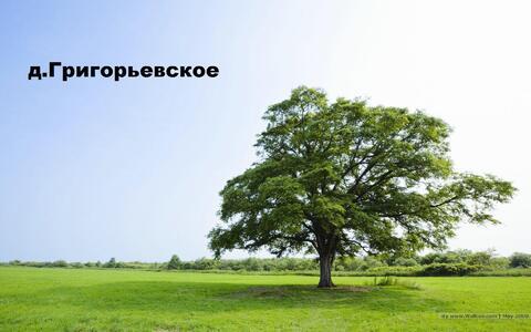 Продам земельный участок 12 соток (ЛПХ), д.Григорьевское, 850000 руб.