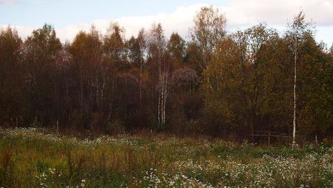 Участок 12-ть соток(ИЖС) с.Озерецкое 23 км от МКАД у леса