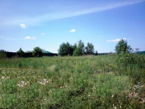 15 соток возле Голицыно 30 км от МКАД Минское шоссе
