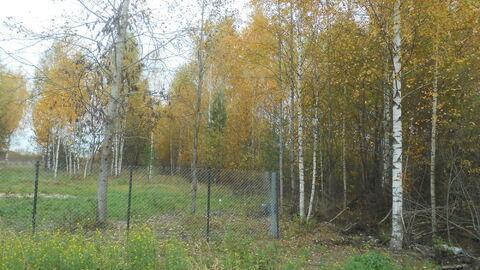 Продаётся земельный участок в Московской области