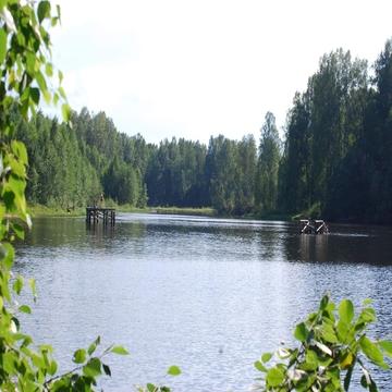 Участок крайний к лесу 8 соток 50 км от Москвы г. Павловский Посад.