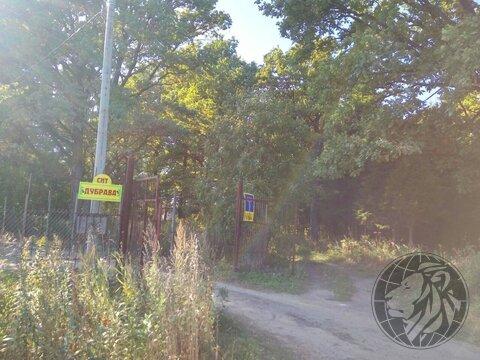 Участок 5,5 соток на краю леса, СНТ Дубрава, Климовск, Подольск.