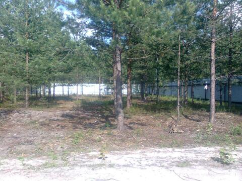 Садовый участок в Павловском Посаде, 550000 руб.